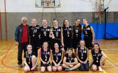 Občinsko in področno prvenstvo v košarki za starejše deklice